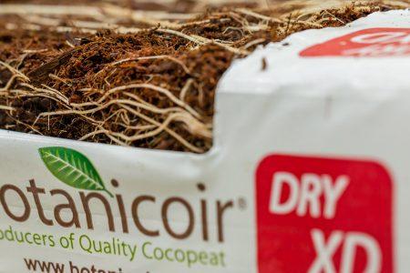 Botanicoir Dry XD product