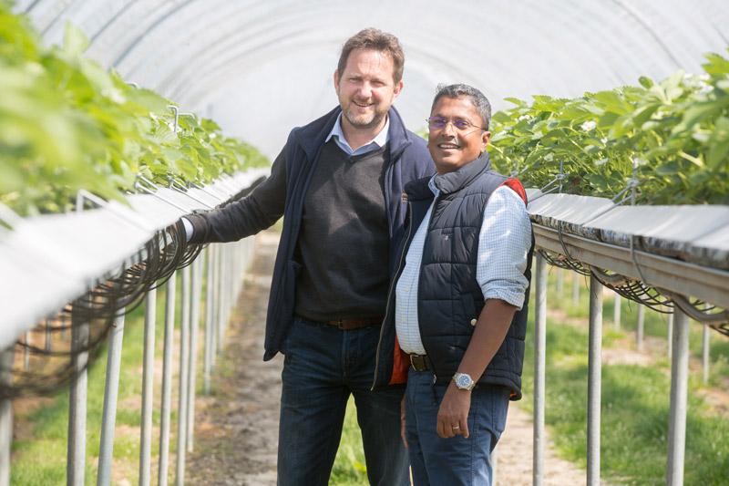 Agrovista UK partner