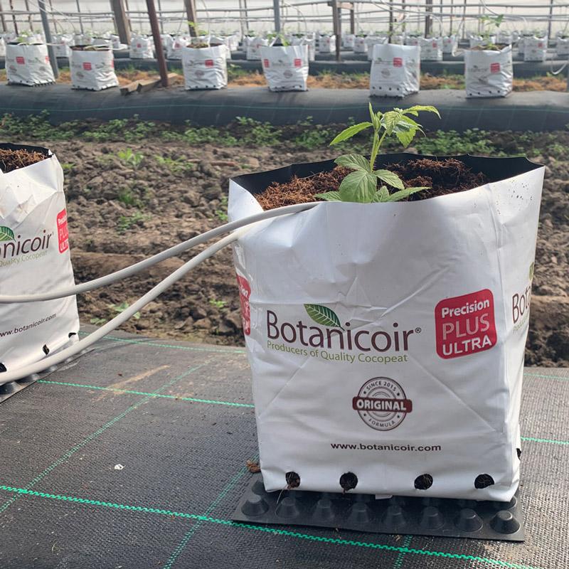 Offer bio-degradable plastic
